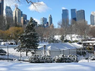 New York – světové centrum umění, architektury a designu v kouzelném čase Vánoc